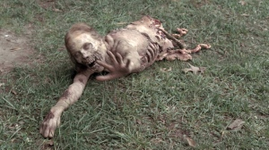 "This zombie featured in The Walking Dead pilot episode, and remains one of the most memorable of the ""walkers."""